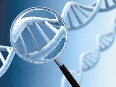 真正的投资者,能够抗拒投机的基因