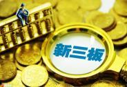"""""""长线资金"""", 助力新三板融资市场企业稳定"""