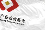 李奇霖:不一样的产业基金