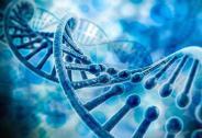 基因测序300亿美元的诱惑 创业者及投资人准备好了吗?