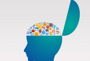 拒绝开颅,我们能扩充自己的脑容量吗