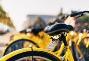 单车战争下半场:哈罗、摩拜、ofo三足鼎立,谁在影响战局走向?