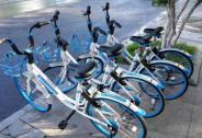 哈罗单车上线禁停区 第二次违规停车将被扣2块