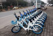 行业寒冬哈罗能否在共享单车下半场竞争中突围?