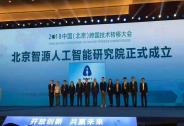 北京发布智源行动计划,源码资本投资合伙人张宏江担任首届理事长