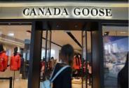 加拿大鹅暴跌,波司登大涨。国货是如何逆袭的?