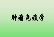 肿瘤免疫学与免疫治疗决策者大会(CIIS2019)将于5月在上海召开!