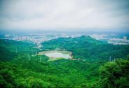 这里被誉为夏日避暑圣地、广东最美森林公园,你去过吗?