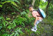 最亲近自然的带娃游,尽在东莞观音山
