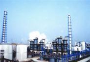 深化中亚能源合作 保障国家能源安全