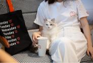 投资家网快讯|宠物家Pet'em完成近亿元新一轮融资,熊猫资本跟投