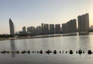 亚洲最大水秀项目建成两年成摆设,投资3亿多至今拖欠百万设计费