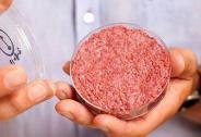 中国人造肉市场新动作 上市公司积极布局推动产业格局调整
