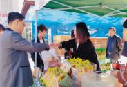 自贸区政策红利可期,供销大集与海南商业共成长